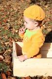 Halloween Baby Stock Photography
