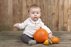 Halloween baby with pumpkins Stock Photography