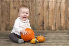 Halloween baby with pumpkins Stock Images
