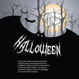 Halloween Backdrop. Cool Halloween Background with Bats Stock Photo