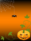 Halloween background. With jack-o-lantern and spider Royalty Free Stock Images