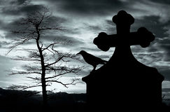 Halloween background. With raven on a tomb on a dark gloomy night Stock Image