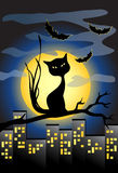 Halloween background with black cat and full moon. Vector illustration with black cat and bats Royalty Free Stock Photo