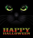 Halloween background with black cat. Royalty Free Stock Photos