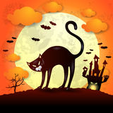 Halloween background with black cat Stock Image
