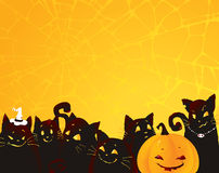 Halloween background with black cats and pumpkin. Royalty Free Stock Photos
