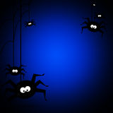 Halloween background with black spiders Stock Photos