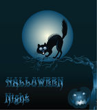Halloween Background with Cat and Pumpkin Stock Photography
