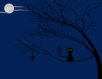 Halloween Background of a Cat in a Tree Royalty Free Stock Image