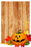 Halloween background. The colorful Pumpkin halloween as background Royalty Free Stock Image