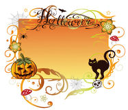 Halloween, background. Colorful halloween background with pumpkin and black cat Stock Photos