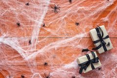 Halloween background with decorative creepy web, spiders and gif Stock Image