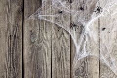 Halloween background with decorative creepy web and spiders on o Royalty Free Stock Photo