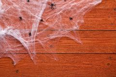 Halloween background with decorative creepy web and spiders on orange wooden boards. Blank space for text. Royalty Free Stock Images