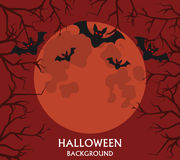 Halloween background, flying bats, red full moon Royalty Free Stock Images