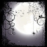Halloween background. Full moon and a cobweb Royalty Free Stock Photography