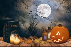 Halloween background with Halloween pumpkin Stock Images