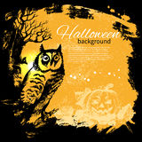 Halloween background. Hand drawn illustration Stock Image