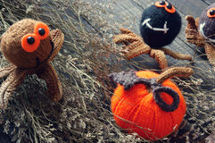Halloween background, handmade, pumpkin, spider, october. Halloween background with handmade pumpkin, funny spider, with knitted decoration for holiday seasonal Royalty Free Stock Photo