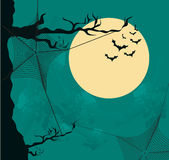 Halloween background with moon and spider web Stock Image