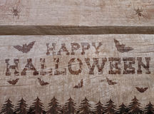 Halloween background with net and bats on wood. Stock Images