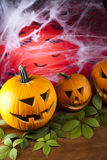 Halloween background with net and spider Stock Photos