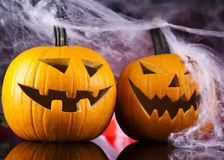 Halloween background with net and spider Stock Images