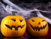 Halloween background with net and spider Royalty Free Stock Photography