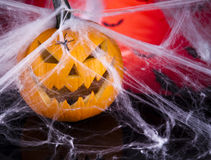 Halloween background with net and spider Royalty Free Stock Photo