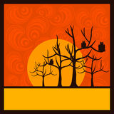 Halloween background ornaments and trees Royalty Free Stock Photos