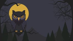 Halloween background with owl cartoon character.Owl vector illus royalty free stock images