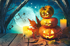Halloween background with pumpkin jack o lantern Stock Photos