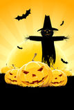 Halloween Background with Pumpkin and Scarecrow Royalty Free Stock Photos