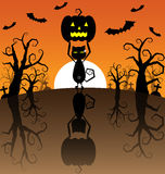 Halloween Background with Pumpkins and black cat Stock Photo