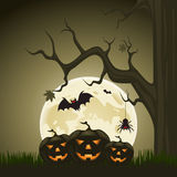 Halloween background with pumpkins and moon in the back Stock Photos