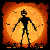 Halloween background with pumpkins Stock Image