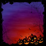 Halloween background with pumpkins and spiders Royalty Free Stock Photo