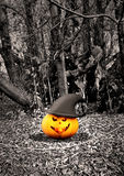 Halloween background - pumpkins and trees Stock Photos