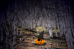Halloween background - pumpkins and trees Royalty Free Stock Image