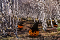 Halloween background - pumpkins and trees Royalty Free Stock Photo