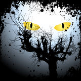 Halloween background with the scary eyes Stock Photography
