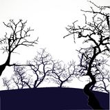 Halloween background with scary trees Stock Photography
