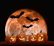 Halloween background scene with full moon, pumpkins and bats Royalty Free Stock Photos