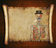 Halloween background scroll sign with  skeleton  in the banner Royalty Free Stock Photos