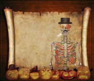 Halloween background scroll sign with skeleton  in the banner Royalty Free Stock Image