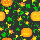 Halloween background. Seamless pattern. Pumpkin with twisted stems, leaves and flowers on a black background. Texture for print, wallpaper, home decor, textile vector illustration