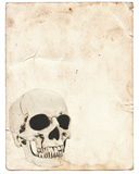 Halloween background with skull on old vintage paper. Halloween background with human skull on old vintage paper royalty free stock photo