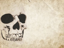 Halloween background with skull on old vintage paper. Halloween background with human skull on old vintage paper royalty free stock image