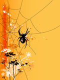 Halloween background with spider Royalty Free Stock Image