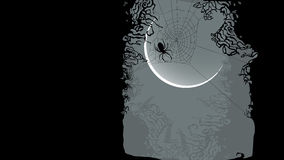 Halloween background - spider on cobweb Stock Photography